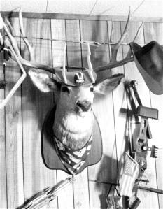 Image 5 deer head